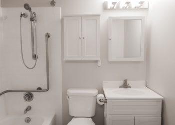 Congress Park Bathroom